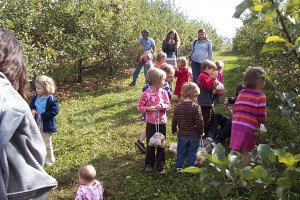 Lots of our busy apple pickers.