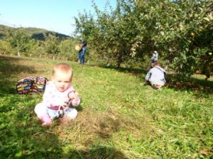 I am not too young to pick apples says Lilly