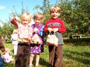Look at all the apples we picked.