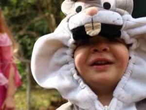Dillon the Rabbit